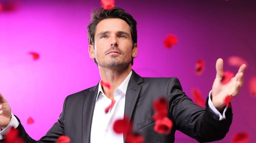 Der Bachelor räumt ab: Heiße Quote für letzte Rose