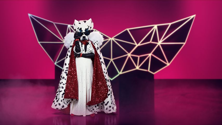 """Der Dalmatiner bei """"The Masked Singer"""""""