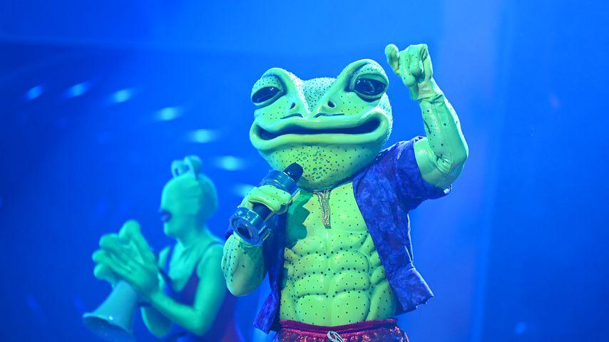 """Der Frosch bei """"The Masked Singer"""""""