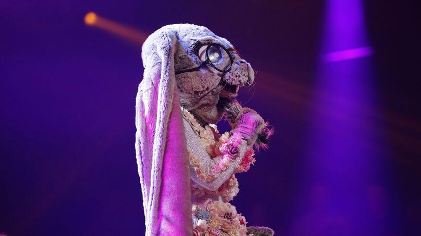 """Der Hase in der ersten Liveshow von """"The Masked Singer"""" 2020"""