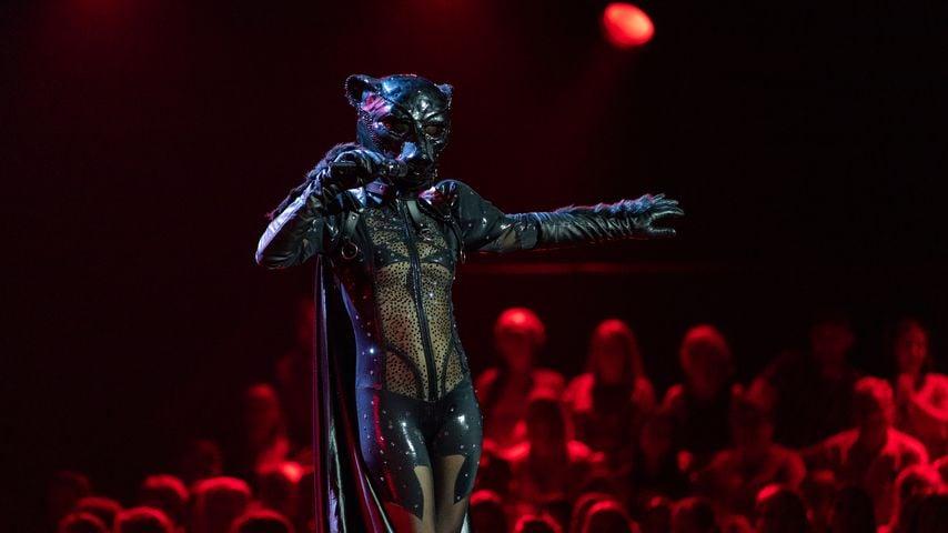 """Der Panther von """"The Masked Singer"""""""