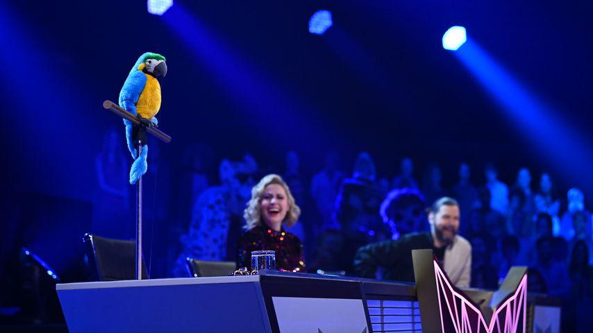"""Der Papagei bei """"The Masked Singer"""""""