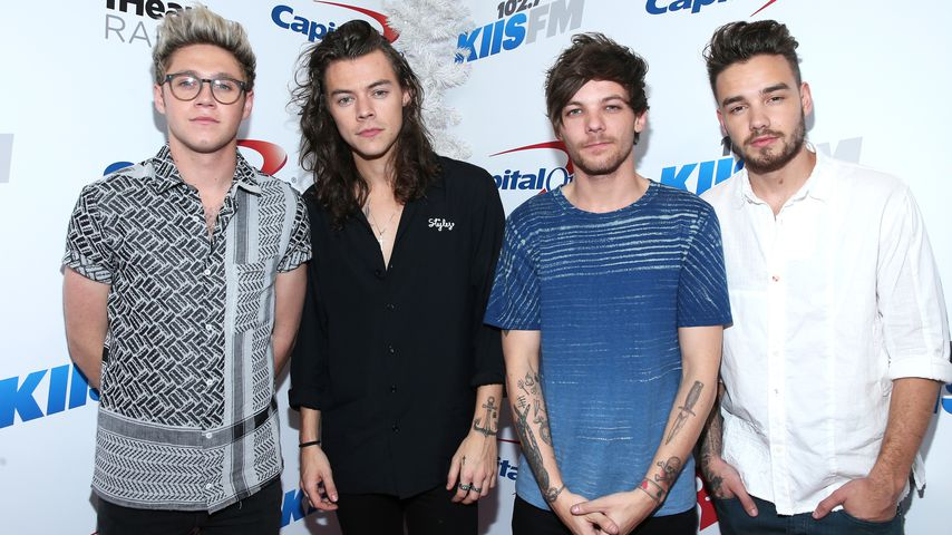 Die Boyband One Direction 2015