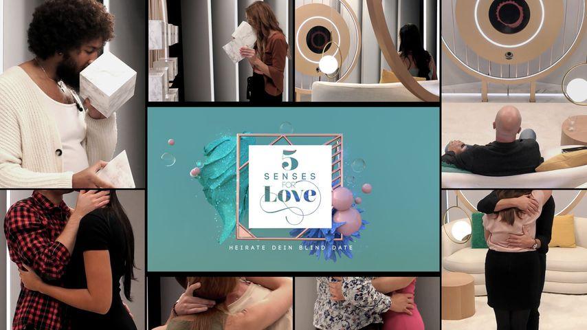 """Verlobungsmarathon: Die """"5 Senses for Love""""-Quoten steigen!"""