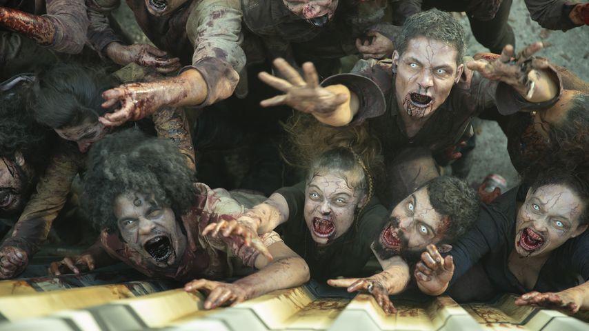 """Die Zombies aus """"Reality Z"""""""
