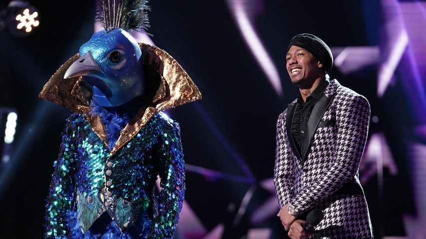 "Donny Osmond und Nick Cannon in ""The Masked Singer"" 2019"