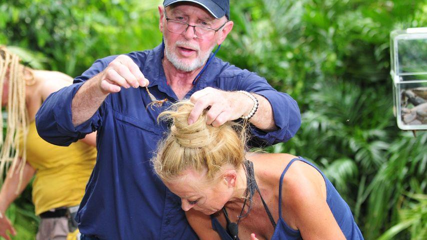 RTL-Rente? Dr. Bob will mit dem Dschungelcamp aufhören!