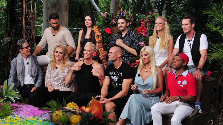 Promis haben überzeugt: Zuschauer lieben Dschungel-Reunion