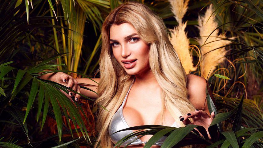Dank Dschungel & Playboy: Abo-Rekord für Giuliana Farfalla
