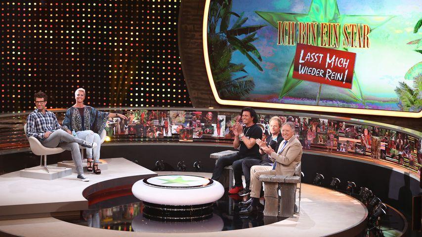 Sommer-Dschungel-Finale: Wer darf 2016 nach Australien?