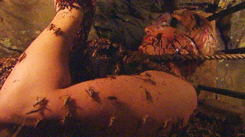 Dschungel-Olivia Jones endlich wieder im Darkroom!