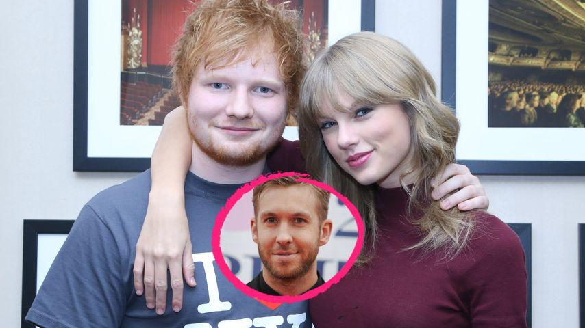 Taylor Swift & Calvin Harris in love? Das sagt Ed Sheeran!