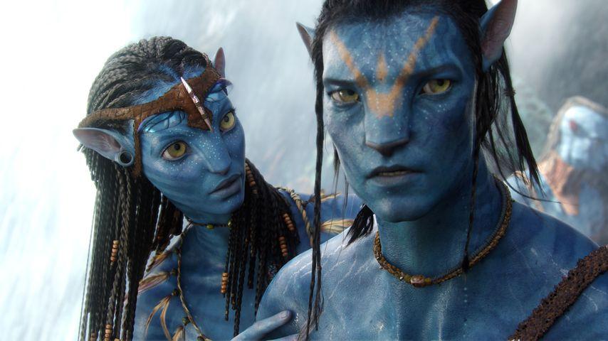 """Eine Szene aus """"Avatar"""""""