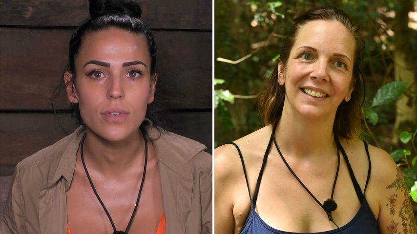 Kuh-Urin-Gate im Dschungelcamp: Das sagen Elena und Danni