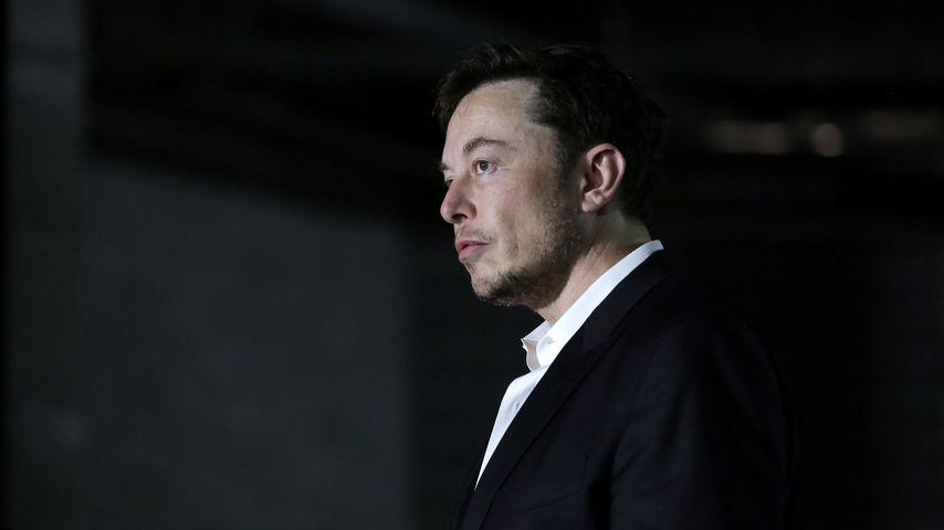 Elon Musk, Unternehmer