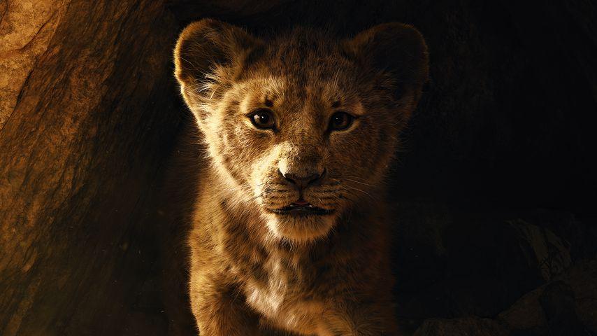 """Filmplakat zu """"Der König der Löwen"""""""