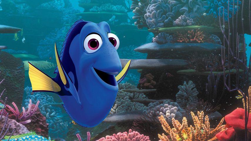 """""""Findet Nemo""""-Fortsetzung: Doktorfisch Dorie kehrt zurück!"""