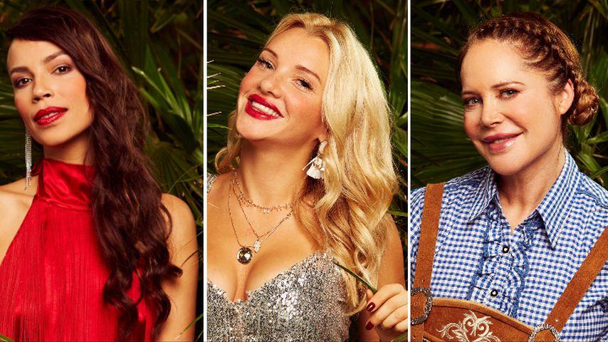Creme & Co.: Das sind die Luxusartikel der Dschungelcamper!