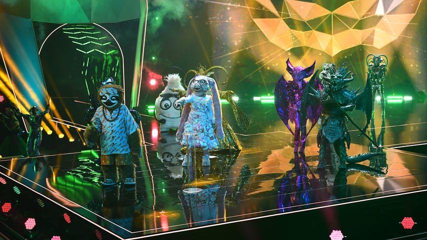 """Gruppenbild von """"The Masked""""-Singer"""