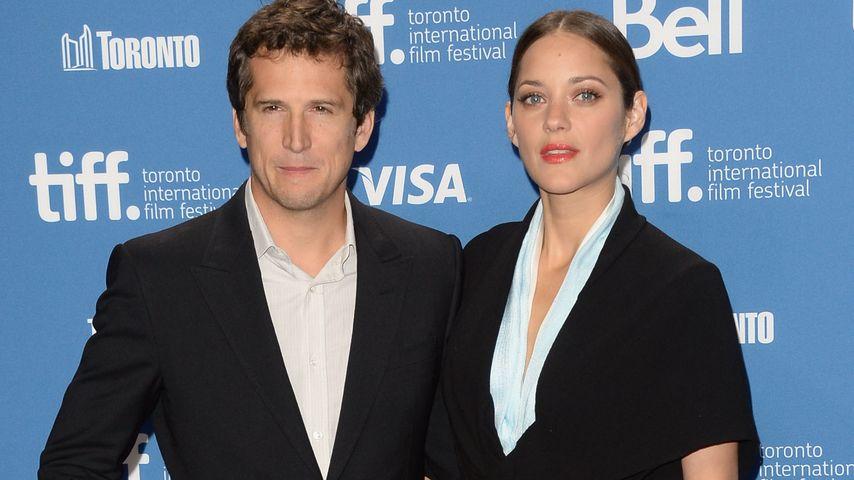Guillaume Canet und Marion Cotillard beim Filmfest in Toronto