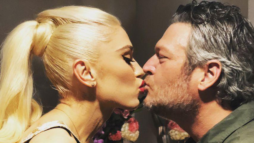 Via Leihmutter? Gwen Stefani & Blake Shelton wollen ein Baby