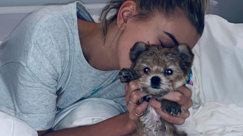 Erstes Bieber-Baby: Justin & Hailey sind stolze Hunde-Eltern