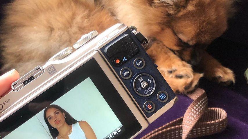 Hana Cross und ihr Hund Soho