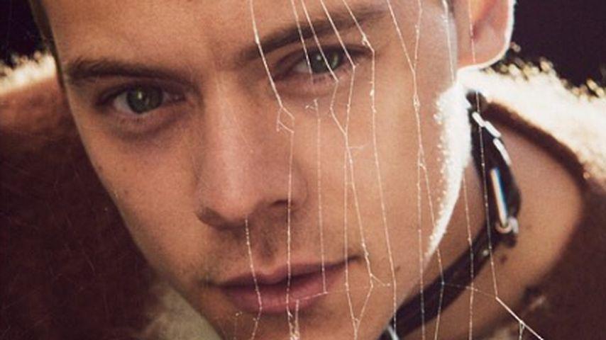 Harry mit Leder-Halsband und verträumtem Blick