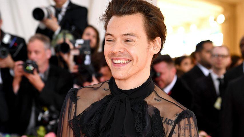 """""""Arielle""""-Gerücht: Wäre Harry Styles ein guter Prinz Eric?"""