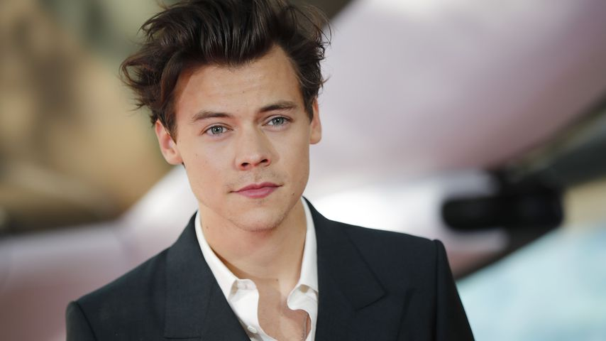 Harry Styles, Sänger und Schauspieler