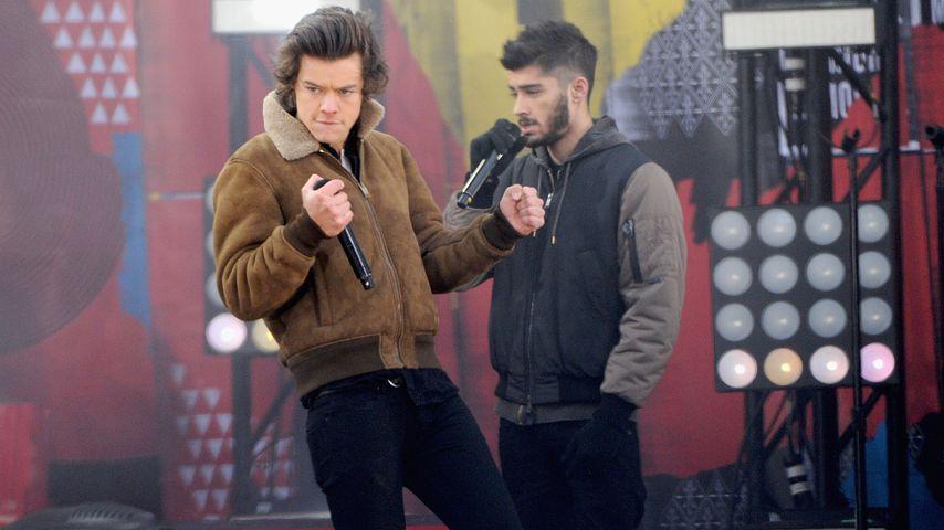 Harry Styles und Zayn Malik