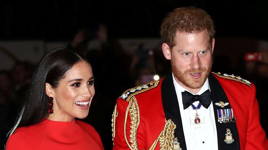 Lady Colin behauptet: Meghan ist viel schlauer als Harry!