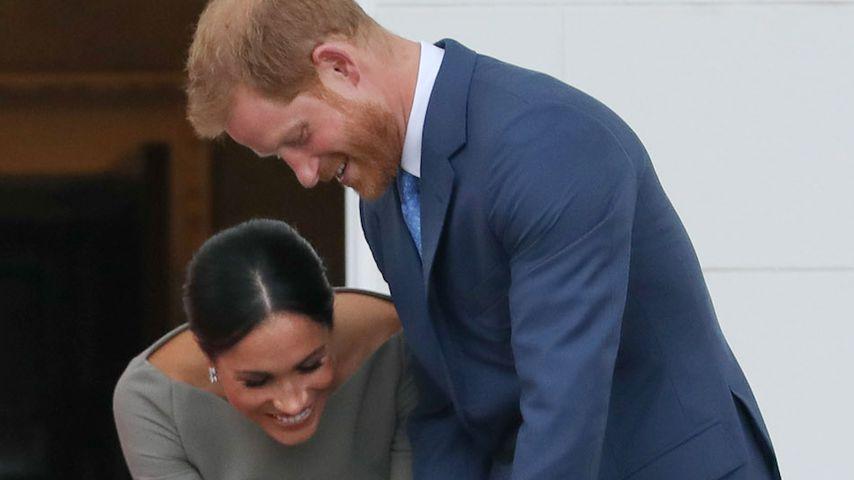 Herzogin Meghan und Prinz Harry mit einem Hund