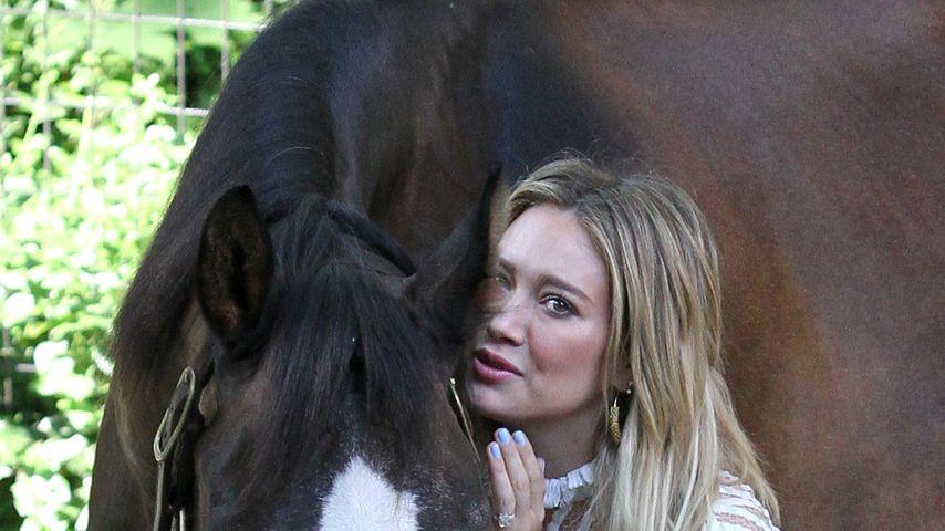 Tierisch! Hilary Duff gibt die Pferdeflüsterin