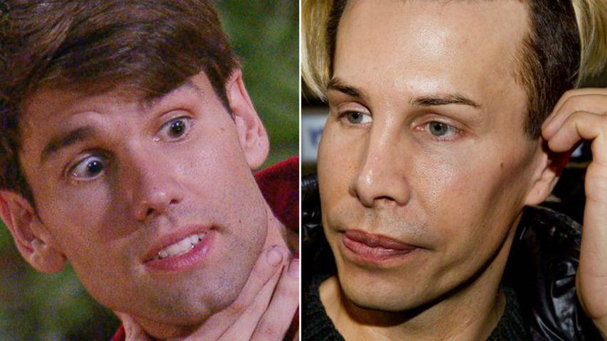 Honey verunsichert: Ist Florian Wess' TV-Hass etwa ein Fake?