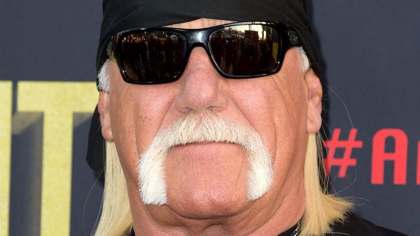 """""""Bremsen geschmolzen"""": Hulk Hogans Flugzeug musste notlanden"""
