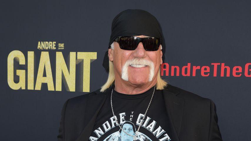 Rassismus-Skandal! Wrestler Hulk Hogan von der WWE verbannt