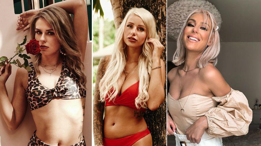"Zickenalarm? Drei neue Ladys bei ""Bachelor in Paradise""!"