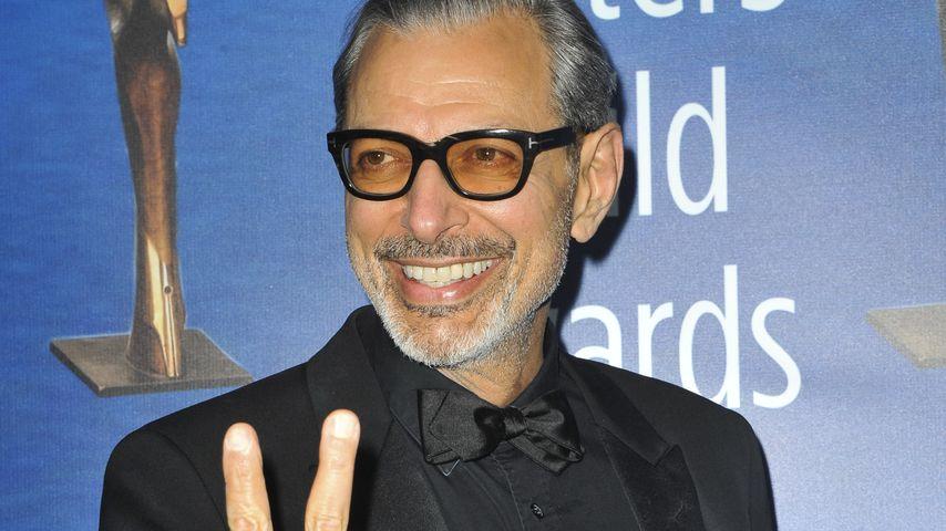 """Juhu! Jeff Goldblum ist im """"Jurassic World""""-Sequel dabei"""