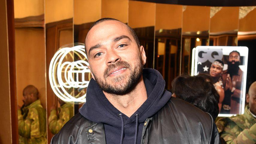 Jesse Williams, Schauspieler