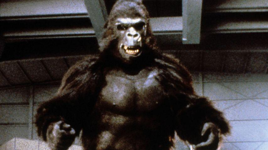 """Hollywood in Trauer: Der Schöpfer von """"King Kong"""" ist tot!"""
