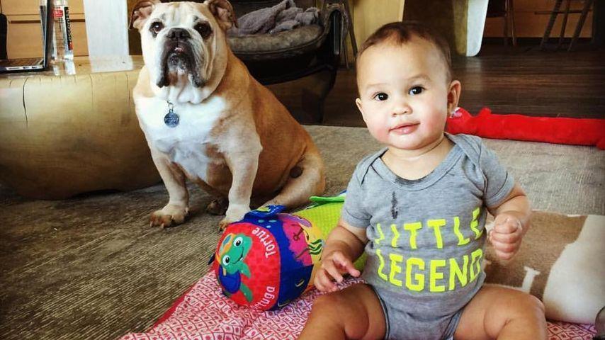 John Legends und Chrissy Teigens Tochter Luna