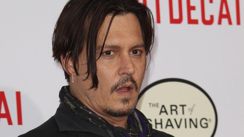 Hundeschmuggel: Muss Johnny Depp in den Knast?