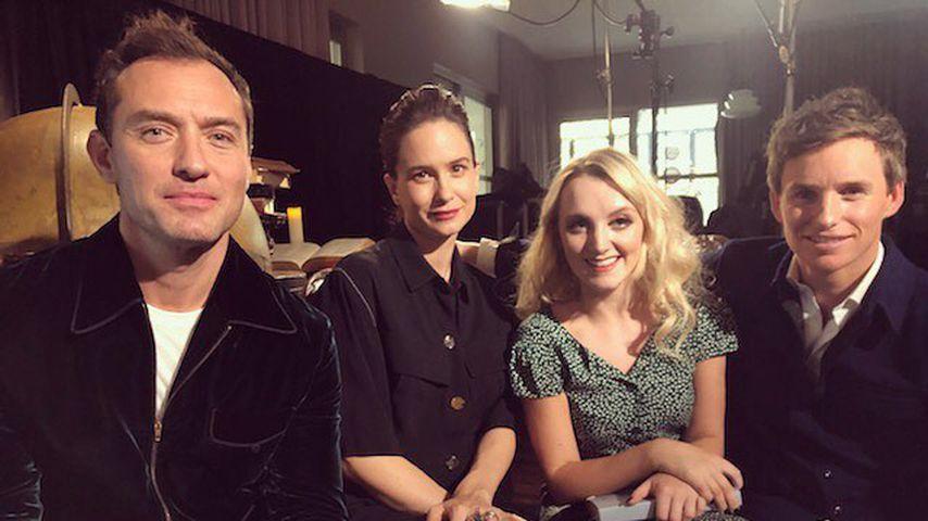 Jude Law, Katherine Waterston, Evanna Lynch und Eddie Redmayne, November 2018