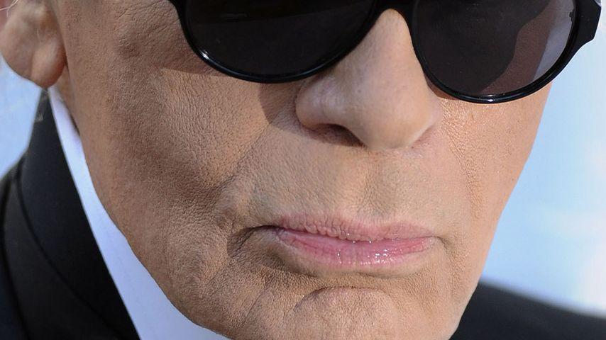 Karl Lagerfeld: Noch mehr Luxus für Choupette