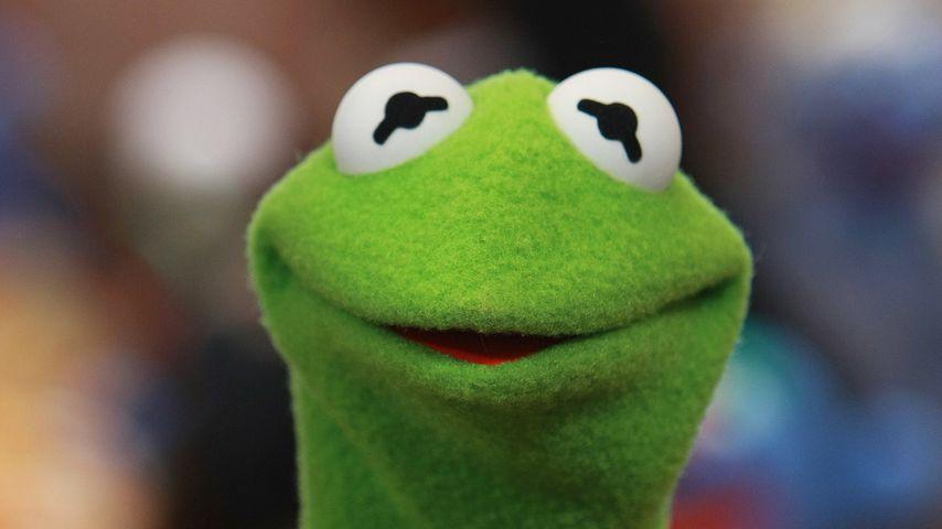 """Kermit der Frosch aus der """"Muppet Show"""""""