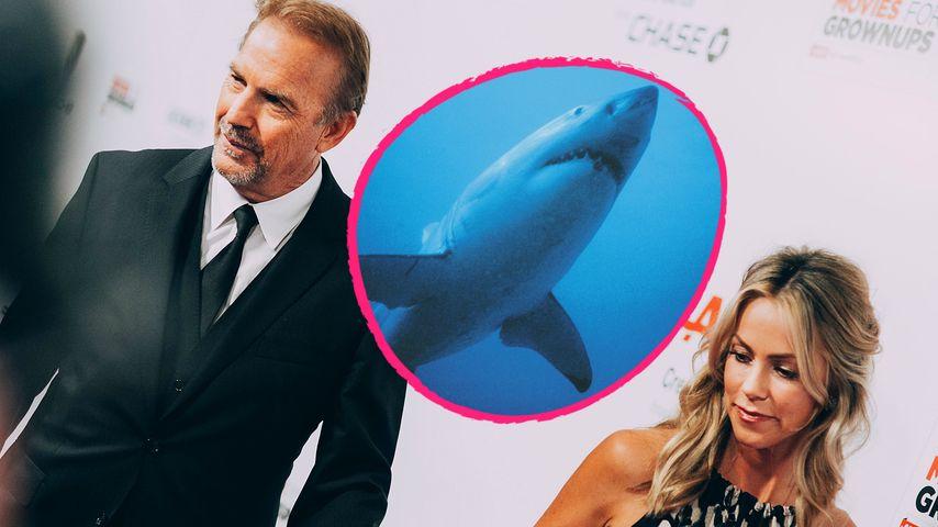 Brutaler Hai-Angriff: Kevin Costner rettet seine Ehefrau!