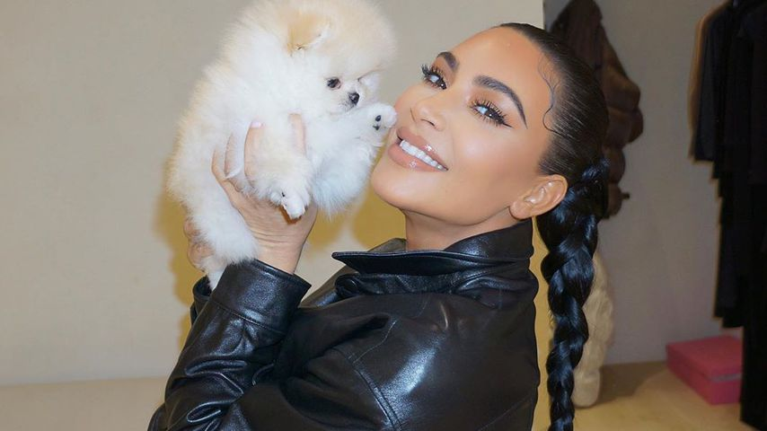 Kim Kardashian mit ihrem Hund