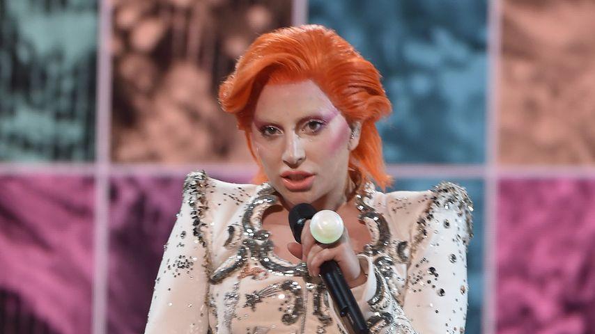 Weihnachts-Wuff: Lady GaGa verkleidet ihre Vierbeiner