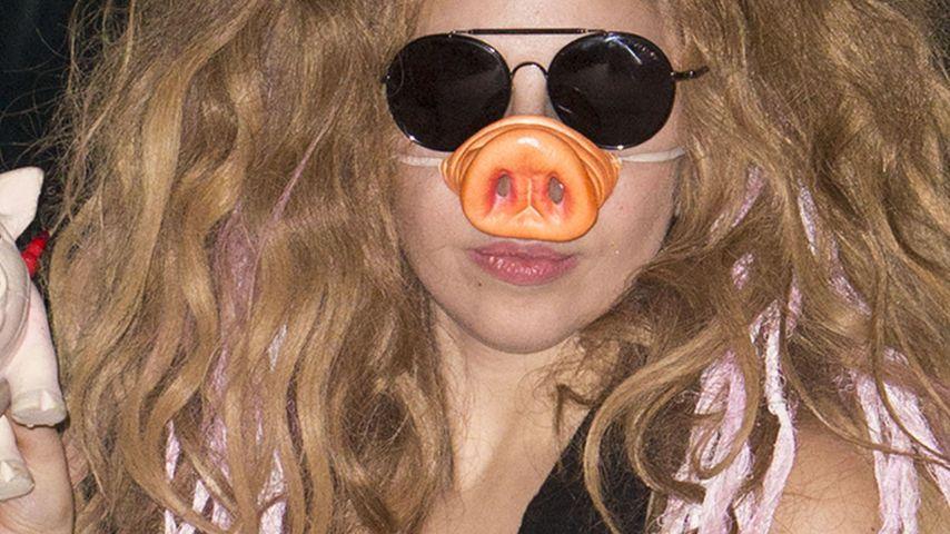 Schwein gehabt! Lady GaGa mit Riesen-Rüssel